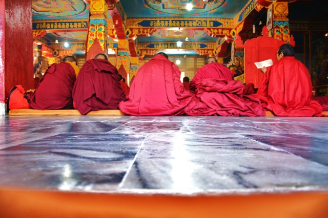 Female monks
